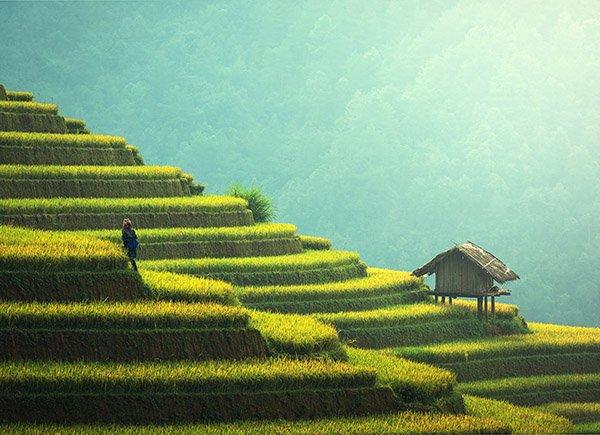 Global Academy on the Green Economy